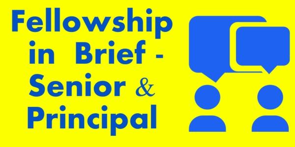 Fellowship on brief